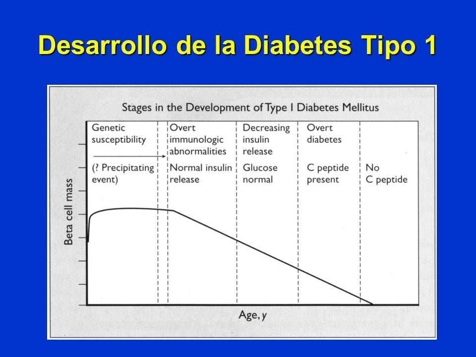 Desarrollo de la Diabetes Tipo 1