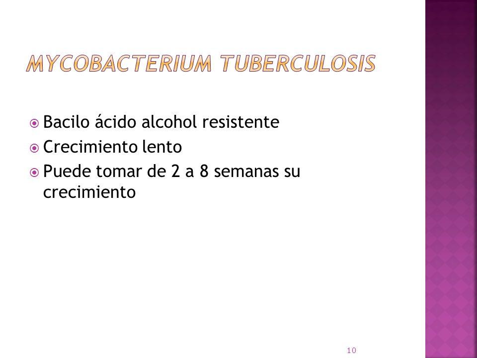 Bacilo ácido alcohol resistente Crecimiento lento Puede tomar de 2 a 8 semanas su crecimiento 10