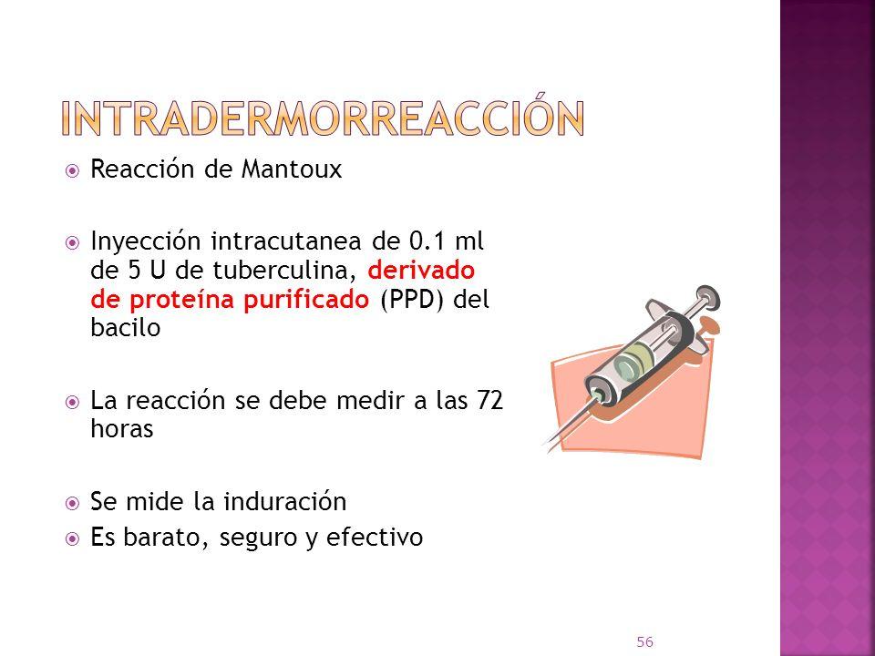 Reacción de Mantoux Inyección intracutanea de 0.1 ml de 5 U de tuberculina, derivado de proteína purificado (PPD) del bacilo La reacción se debe medir