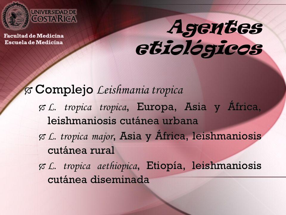 Agentes etiológicos Complejo Leishmania tropica L. tropica tropica, Europa, Asia y África, leishmaniosis cutánea urbana L. tropica major, Asia y Áfric