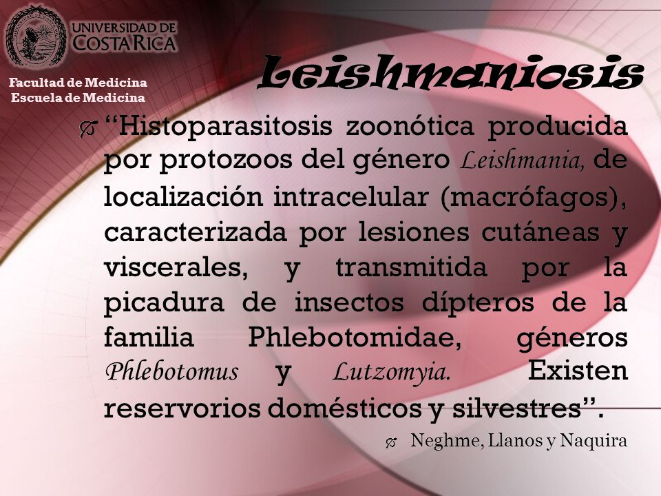 Leishmaniosis Histoparasitosis zoonótica producida por protozoos del género Leishmania, de localización intracelular (macrófagos), caracterizada por l