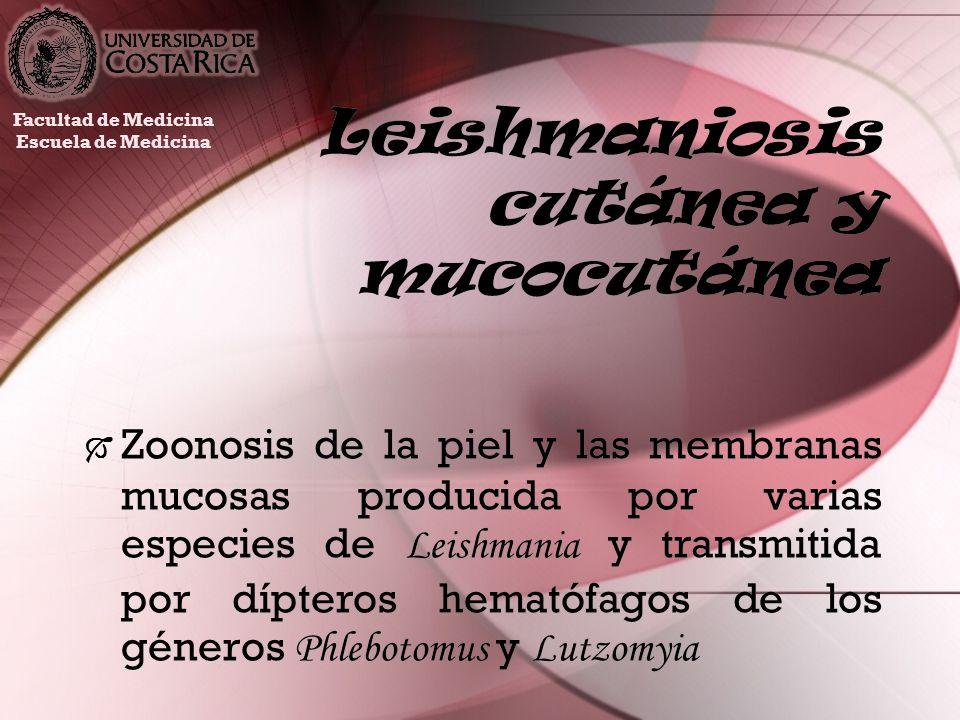 Leishmaniosis cutánea y mucocutánea Zoonosis de la piel y las membranas mucosas producida por varias especies de Leishmania y transmitida por dípteros
