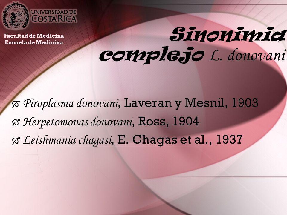 Sinonimia complejo L. donovani Piroplasma donovani, Laveran y Mesnil, 1903 Herpetomonas donovani, Ross, 1904 Leishmania chagasi, E. Chagas et al., 193