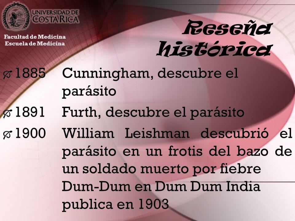 Reseña histórica 1885Cunningham, descubre el parásito 1891Furth, descubre el parásito 1900William Leishman descubrió el parásito en un frotis del bazo