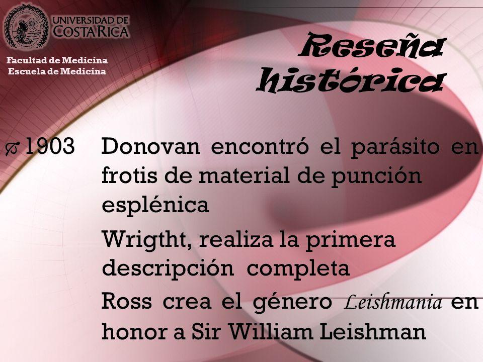 Reseña histórica 1903Donovan encontró el parásito en frotis de material de punción esplénica Wrigtht, realiza la primera descripción completa Ross cre