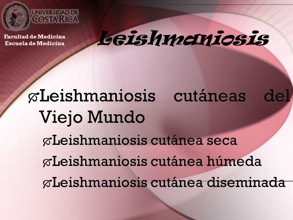 Leishmaniosis Leishmaniosis tegumentaria americana Leishmaniosis cutánea Leishmaniosis mucocutánea Leishmaniosis tegumentaria americana Leishmaniosis cutánea Leishmaniosis mucocutánea Facultad de Medicina Escuela de Medicina