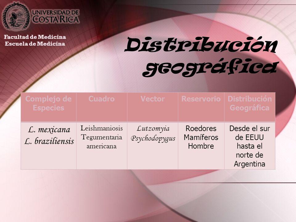 Distribución geográfica Facultad de Medicina Escuela de Medicina Complejo de Especies CuadroVectorReservorioDistribución Geográfica L. mexicana L. bra