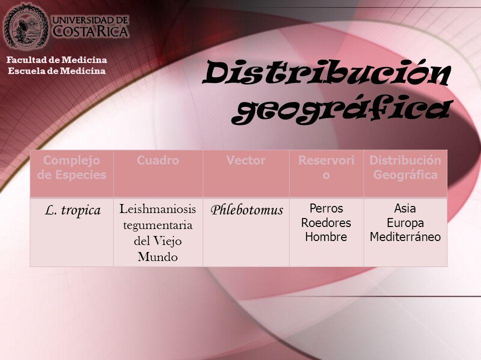 Distribución geográfica Facultad de Medicina Escuela de Medicina Complejo de Especies CuadroVectorReservori o Distribución Geográfica L. tropica Leish