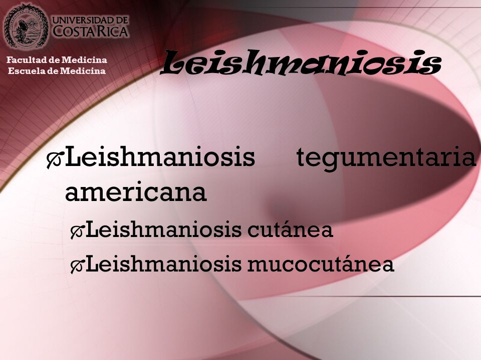 Leishmaniosis Leishmaniosis tegumentaria americana Leishmaniosis cutánea Leishmaniosis mucocutánea Leishmaniosis tegumentaria americana Leishmaniosis