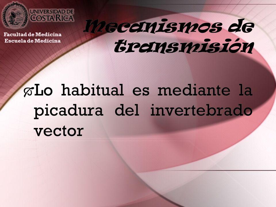 Mecanismos de transmisión Lo habitual es mediante la picadura del invertebrado vector Facultad de Medicina Escuela de Medicina