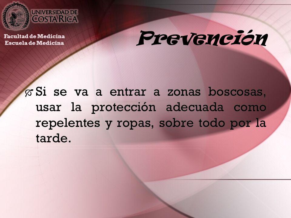 Prevención Si se va a entrar a zonas boscosas, usar la protección adecuada como repelentes y ropas, sobre todo por la tarde. Facultad de Medicina Escu