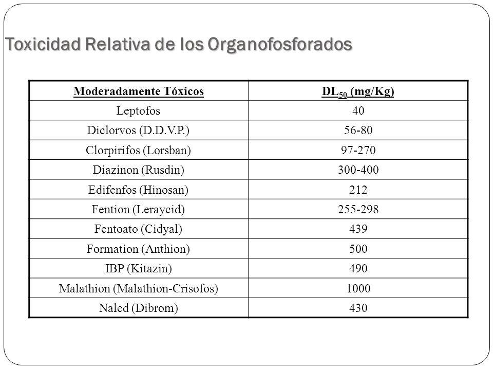 Toxicidad Relativa de los Organofosforados Moderadamente TóxicosDL 50 (mg/Kg) Leptofos40 Diclorvos (D.D.V.P.)56-80 Clorpirifos (Lorsban)97-270 Diazino