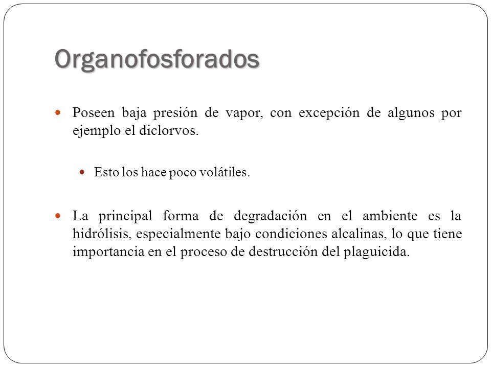 Organofosforados Poseen baja presión de vapor, con excepción de algunos por ejemplo el diclorvos. Esto los hace poco volátiles. La principal forma de