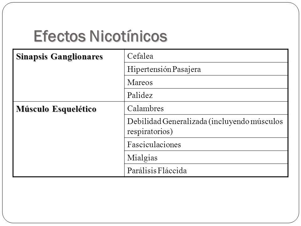 Efectos Nicotínicos Sinapsis Ganglionares Cefalea Hipertensión Pasajera Mareos Palidez Músculo Esquelético Calambres Debilidad Generalizada (incluyend