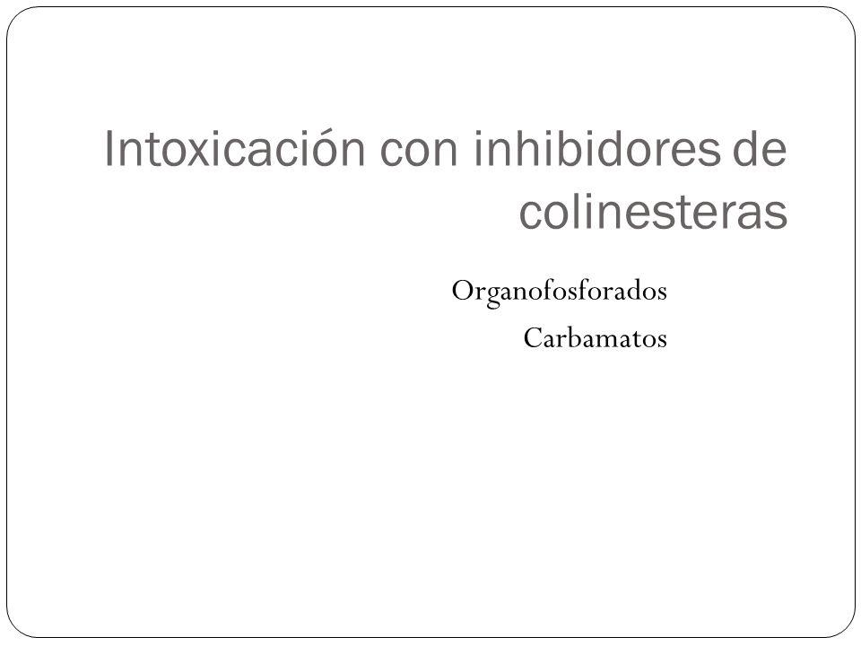Inhibidores de la Acetilcolinesterasa (Colinérgicos Indirectos) 1.