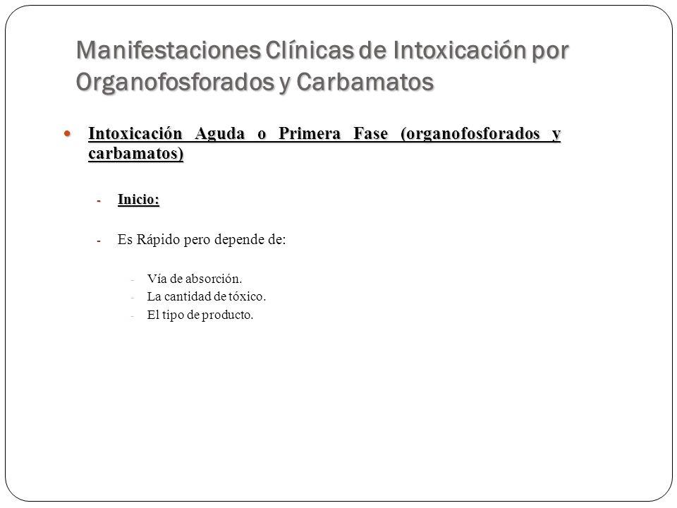 Manifestaciones Clínicas de Intoxicación por Organofosforados y Carbamatos Intoxicación Aguda o Primera Fase (organofosforados y carbamatos) Intoxicac