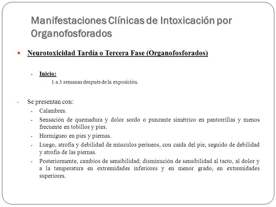 Manifestaciones Clínicas de Intoxicación por Organofosforados Neurotoxicidad Tardía o Tercera Fase (Organofosforados) Neurotoxicidad Tardía o Tercera