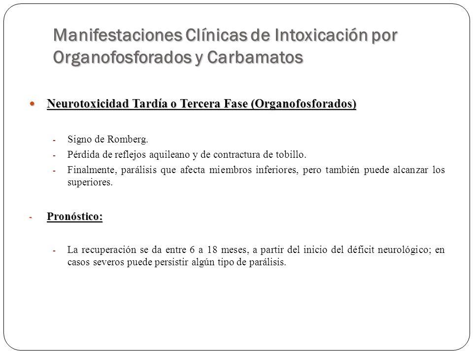 Manifestaciones Clínicas de Intoxicación por Organofosforados y Carbamatos Neurotoxicidad Tardía o Tercera Fase (Organofosforados) Neurotoxicidad Tard