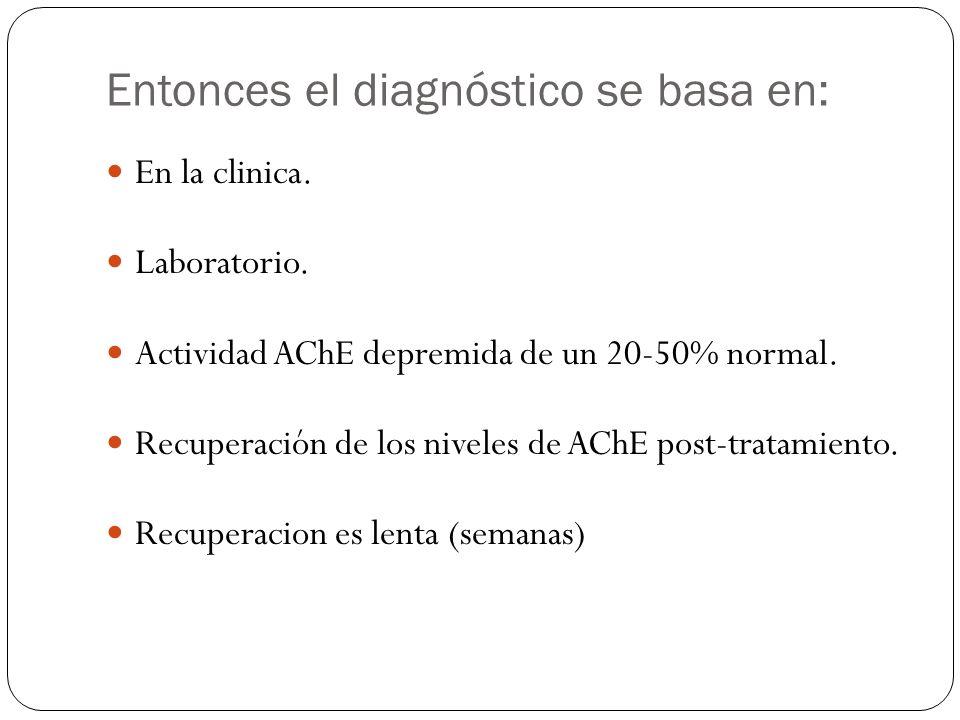 Entonces el diagnóstico se basa en: En la clinica. Laboratorio. Actividad AChE depremida de un 20-50% normal. Recuperación de los niveles de AChE post
