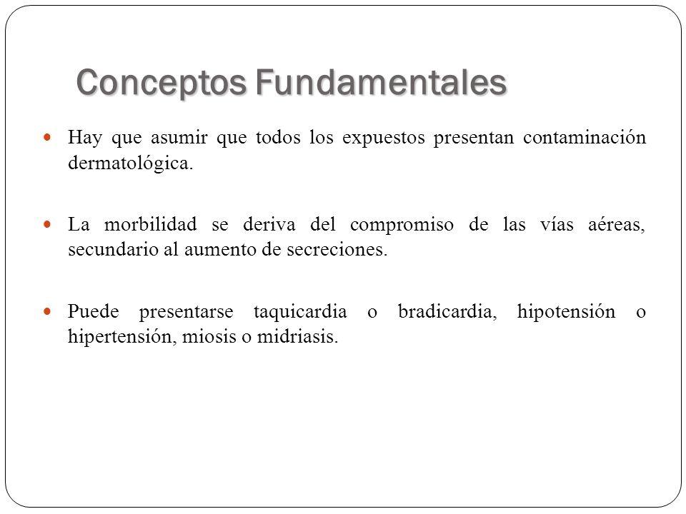 Conceptos Fundamentales Hay que asumir que todos los expuestos presentan contaminación dermatológica. La morbilidad se deriva del compromiso de las ví