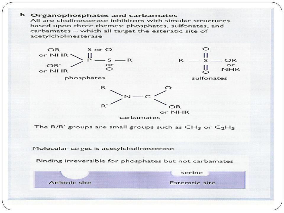 Organofosforados Oxon: Oxígeno unido por doble enlace al fósforo.
