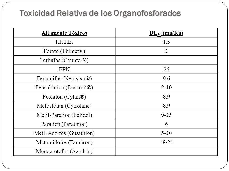 Toxicidad Relativa de los Organofosforados Moderadamente TóxicosDL 50 (mg/Kg) Leptofos40 Diclorvos (D.D.V.P.)56-80 Clorpirifos (Lorsban)97-270 Diazinon (Rusdin)300-400 Edifenfos (Hinosan)212 Fention (Leraycid)255-298 Fentoato (Cidyal)439 Formation (Anthion)500 IBP (Kitazin)490 Malathion (Malathion-Crisofos)1000 Naled (Dibrom)430