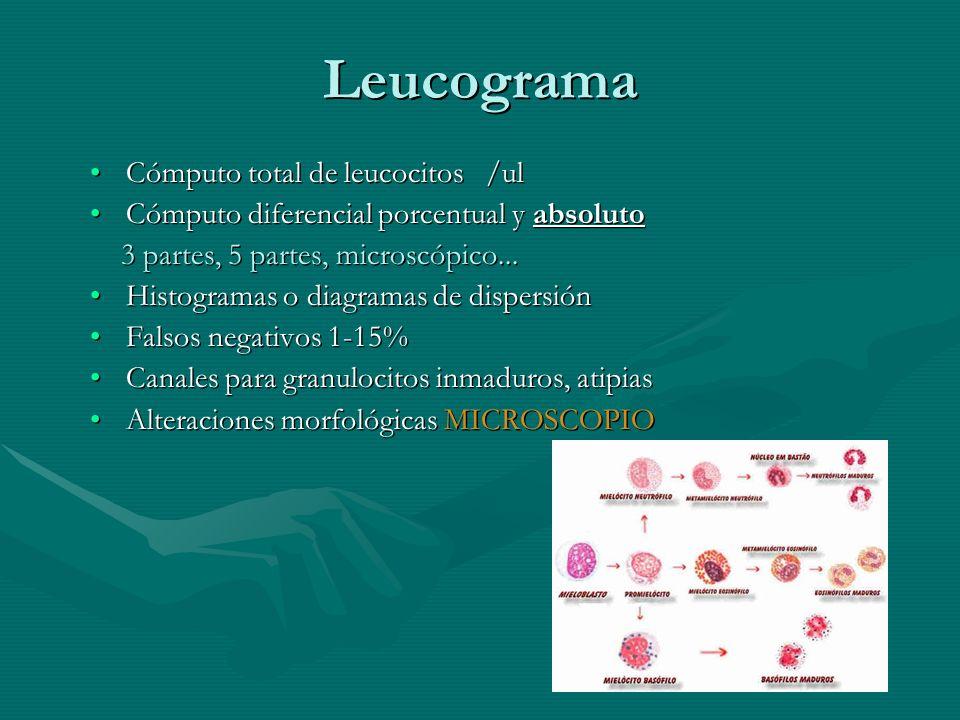 Leucograma Cómputo total de leucocitos /ulCómputo total de leucocitos /ul Cómputo diferencial porcentual y absolutoCómputo diferencial porcentual y ab