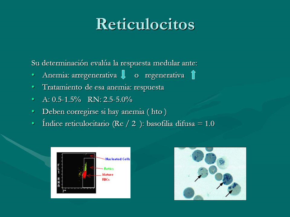 Reticulocitos Su determinación evalúa la respuesta medular ante: Anemia: arregenerativa o regenerativaAnemia: arregenerativa o regenerativa Tratamient