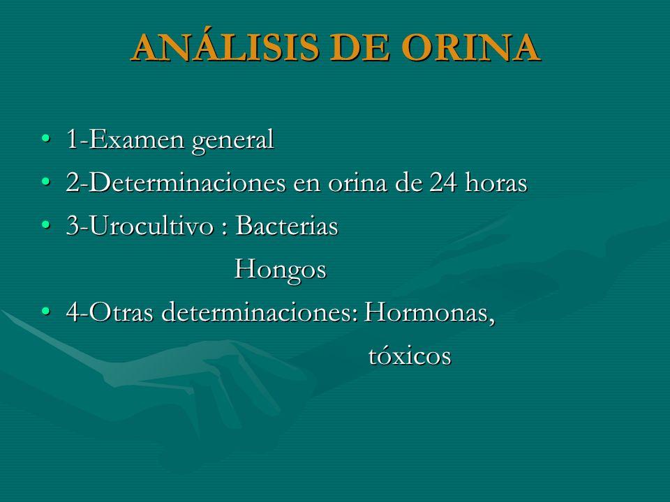 ANÁLISIS DE ORINA 1-Examen general1-Examen general 2-Determinaciones en orina de 24 horas2-Determinaciones en orina de 24 horas 3-Urocultivo : Bacteri