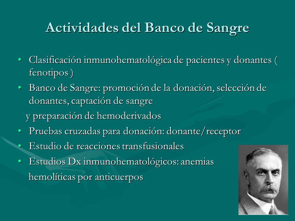 Actividades del Banco de Sangre Clasificación inmunohematológica de pacientes y donantes ( fenotipos )Clasificación inmunohematológica de pacientes y