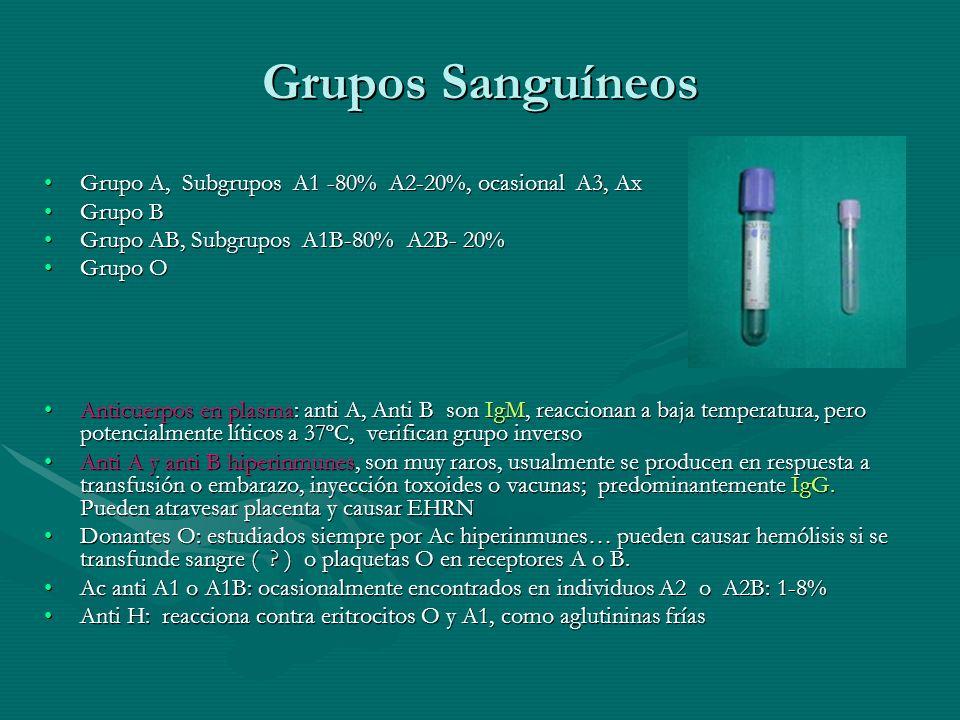 Grupos Sanguíneos Grupo A, Subgrupos A1 -80% A2-20%, ocasional A3, AxGrupo A, Subgrupos A1 -80% A2-20%, ocasional A3, Ax Grupo BGrupo B Grupo AB, Subg
