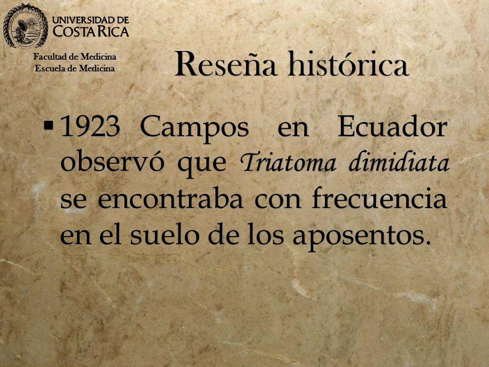 Reseña histórica 1923Campos en Ecuador observó que Triatoma dimidiata se encontraba con frecuencia en el suelo de los aposentos. Facultad de Medicina
