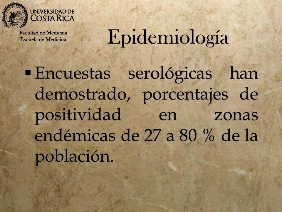 Epidemiología Encuestas serológicas han demostrado, porcentajes de positividad en zonas endémicas de 27 a 80 % de la población. Facultad de Medicina E