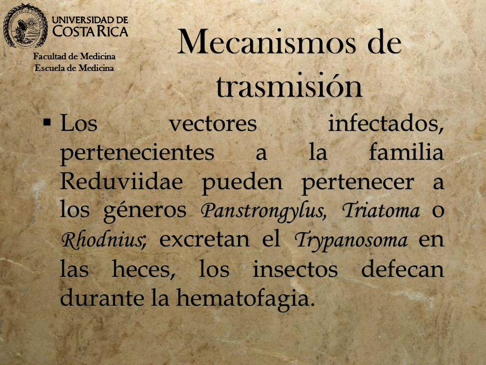 Mecanismos de trasmisión Los vectores infectados, pertenecientes a la familia Reduviidae pueden pertenecer a los géneros Panstrongylus, Triatoma o Rho