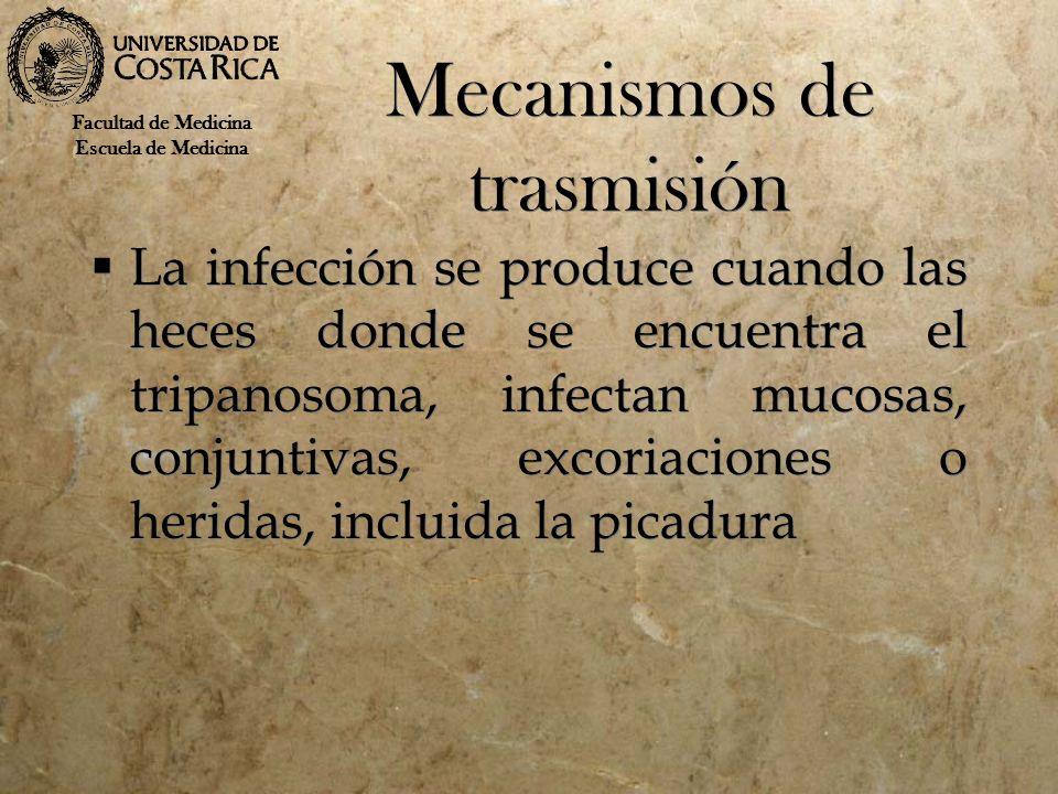 Mecanismos de trasmisión La infección se produce cuando las heces donde se encuentra el tripanosoma, infectan mucosas, conjuntivas, excoriaciones o he