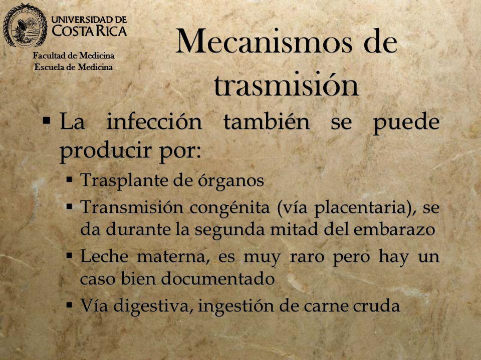 Mecanismos de trasmisión La infección también se puede producir por: Trasplante de órganos Transmisión congénita (vía placentaria), se da durante la s