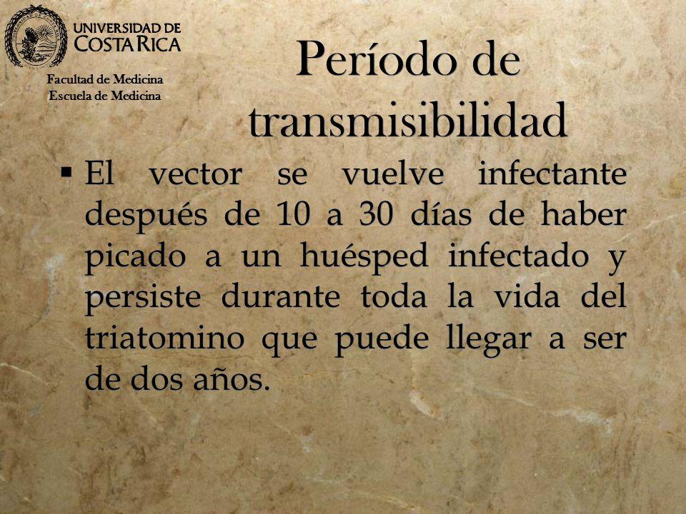 Período de transmisibilidad El vector se vuelve infectante después de 10 a 30 días de haber picado a un huésped infectado y persiste durante toda la v
