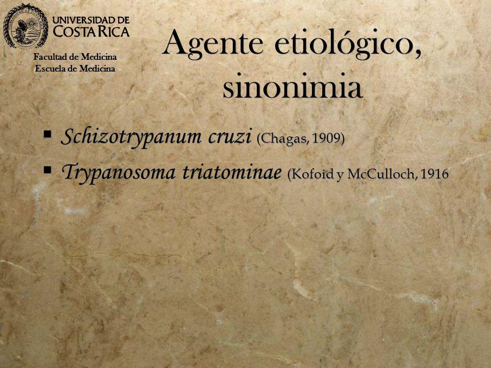 Agente etiológico, sinonimia Schizotrypanum cruzi (Chagas, 1909) Trypanosoma triatominae (Kofoid y McCulloch, 1916 Schizotrypanum cruzi (Chagas, 1909)