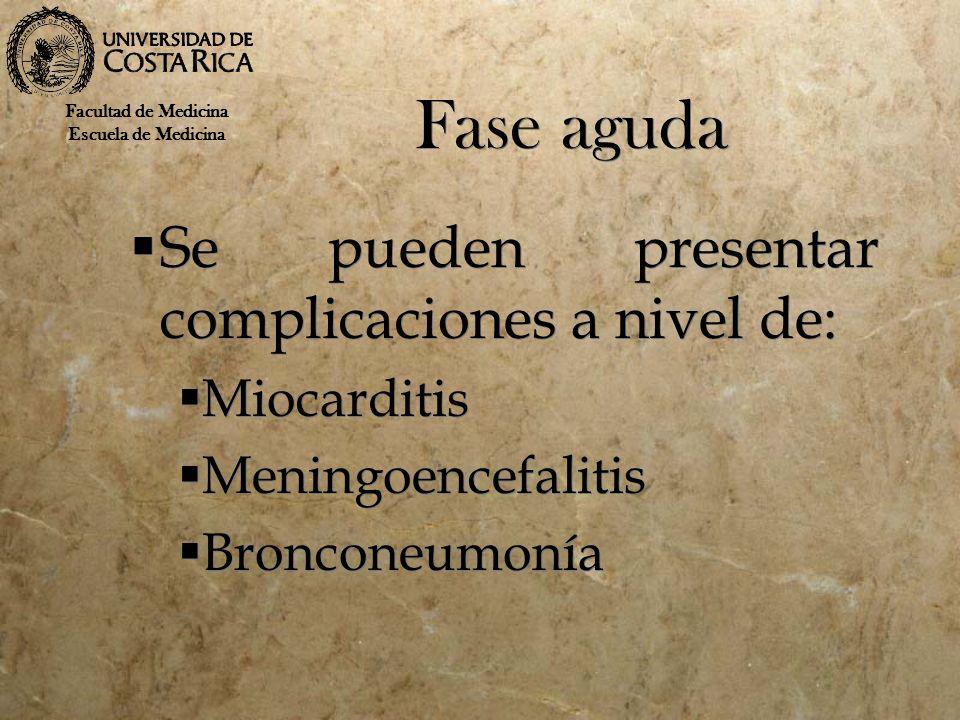 Fase aguda Se pueden presentar complicaciones a nivel de: Miocarditis Meningoencefalitis Bronconeumonía Se pueden presentar complicaciones a nivel de: