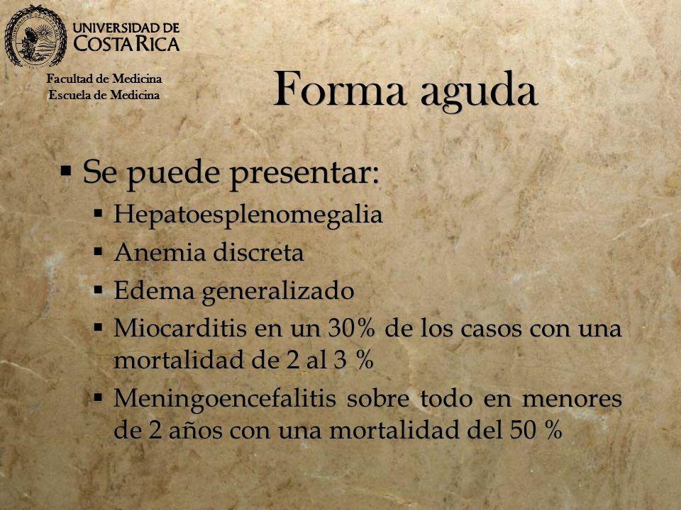 Forma aguda Se puede presentar: Hepatoesplenomegalia Anemia discreta Edema generalizado Miocarditis en un 30% de los casos con una mortalidad de 2 al