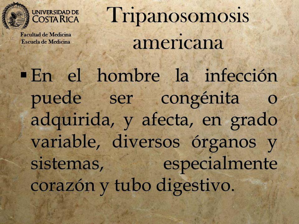 Tripanosomosis americana En el hombre la infección puede ser congénita o adquirida, y afecta, en grado variable, diversos órganos y sistemas, especial
