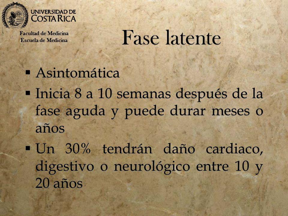Fase latente Asintomática Inicia 8 a 10 semanas después de la fase aguda y puede durar meses o años Un 30% tendrán daño cardiaco, digestivo o neurológ