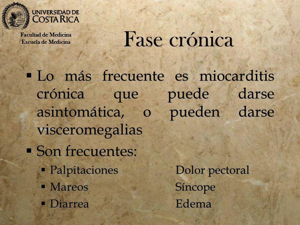 Fase crónica Lo más frecuente es miocarditis crónica que puede darse asintomática, o pueden darse visceromegalias Son frecuentes: PalpitacionesDolor p