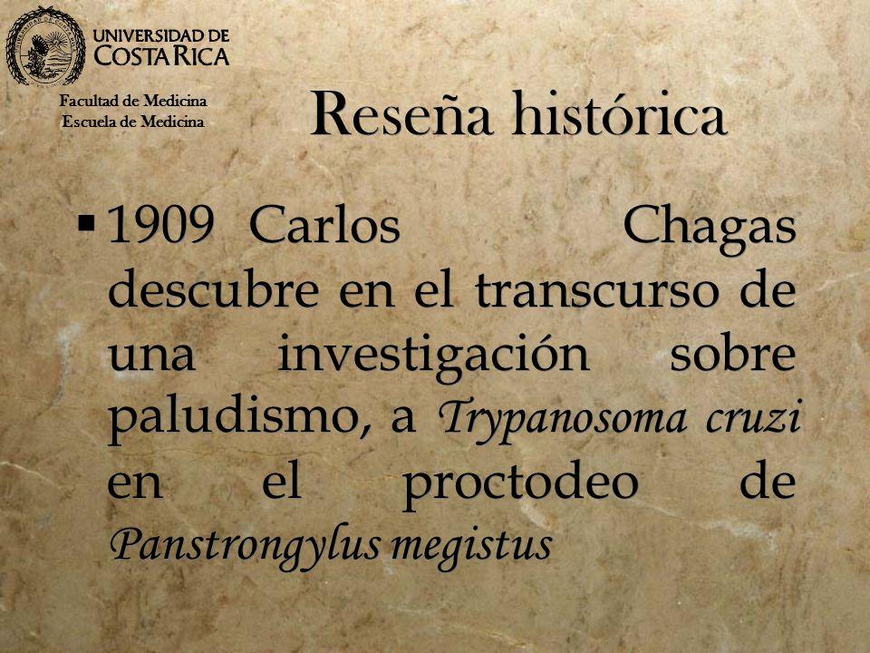 Reseña histórica 1909Carlos Chagas descubre en el transcurso de una investigación sobre paludismo, a Trypanosoma cruzi en el proctodeo de Panstrongylu