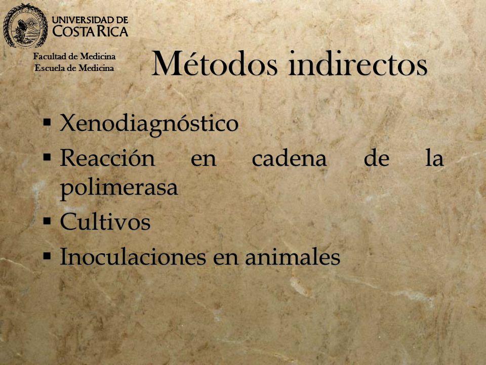 Métodos indirectos Xenodiagnóstico Reacción en cadena de la polimerasa Cultivos Inoculaciones en animales Xenodiagnóstico Reacción en cadena de la pol