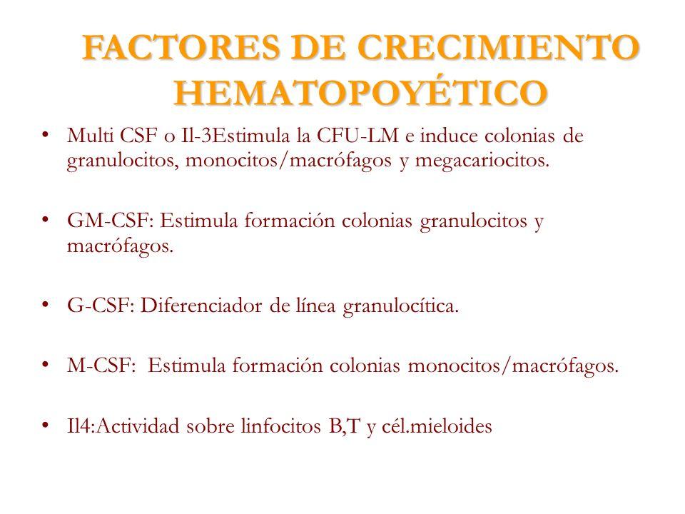 FACTORES DE CRECIMIENTO HEMATOPOYÉTICO Multi CSF o Il-3Estimula la CFU-LM e induce colonias de granulocitos, monocitos/macrófagos y megacariocitos. GM