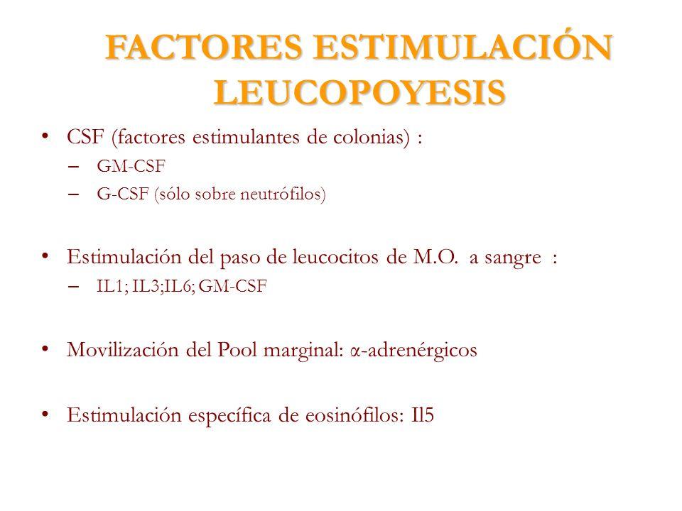 FACTORES ESTIMULACIÓN LEUCOPOYESIS CSF (factores estimulantes de colonias) : – GM-CSF – G-CSF (sólo sobre neutrófilos) Estimulación del paso de leucoc