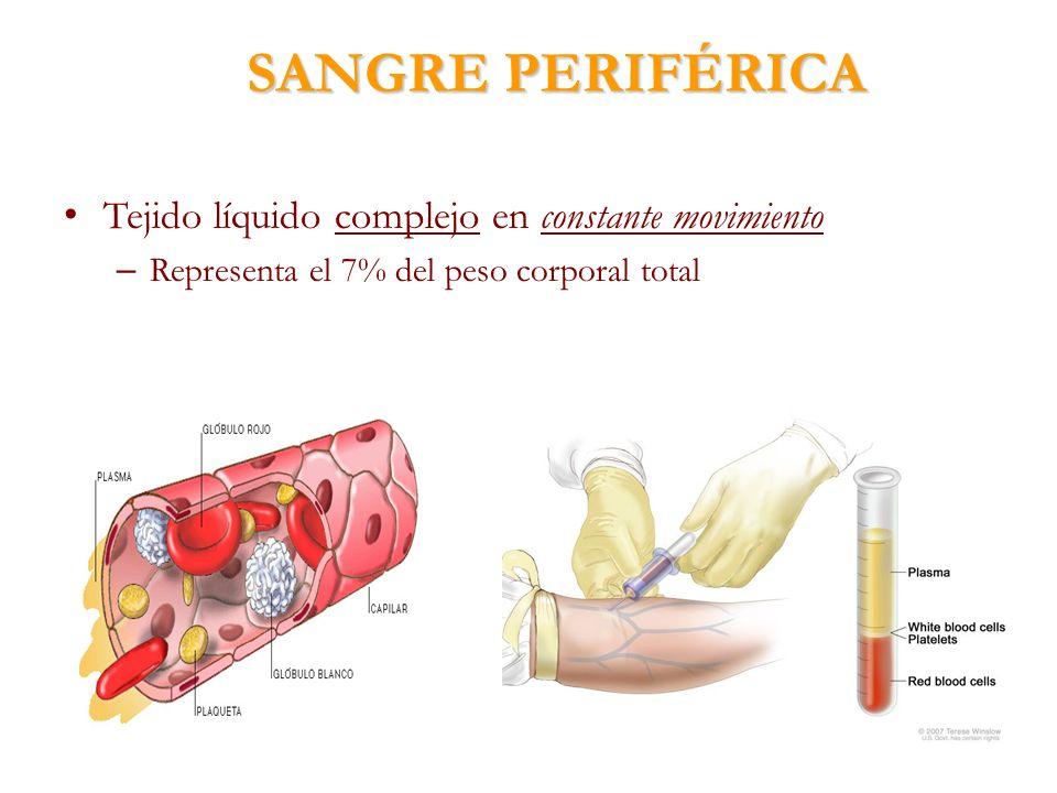 SANGRE PERIFÉRICA Tejido líquido complejo en constante movimiento – Representa el 7% del peso corporal total