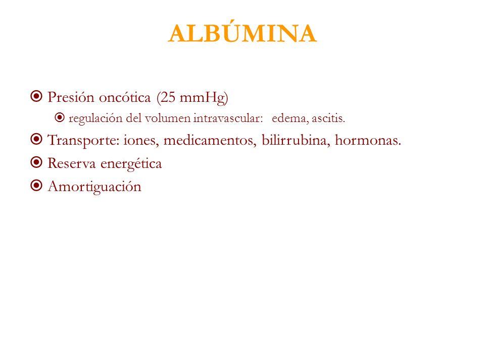 ALBÚMINA Presión oncótica (25 mmHg) regulación del volumen intravascular: edema, ascitis. Transporte: iones, medicamentos, bilirrubina, hormonas. Rese