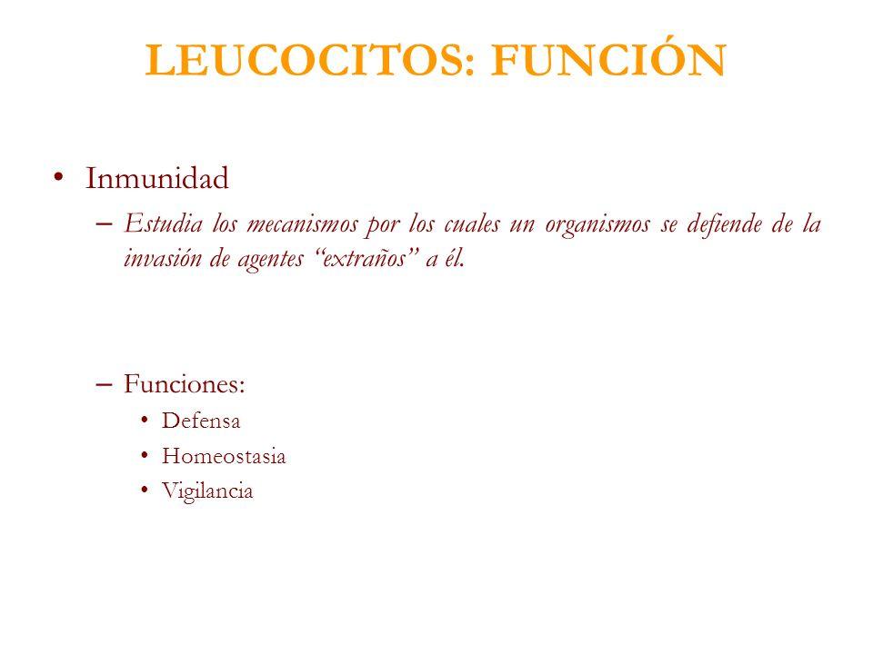 LEUCOCITOS: FUNCIÓN Inmunidad – Estudia los mecanismos por los cuales un organismos se defiende de la invasión de agentes extraños a él. – Funciones: